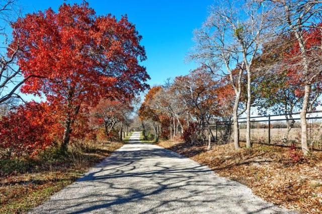 Trct 5 Wilson Road, Whitewright, TX 75491 (MLS #13970658) :: The Sarah Padgett Team