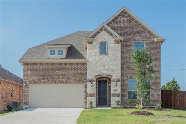 3721 Delta Drive, Mckinney, TX 75071 (MLS #13971290) :: The Chad Smith Team