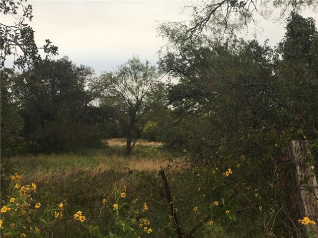 TBD County Road 361, Hawley, TX 79525 (MLS #13971486) :: The Tonya Harbin Team