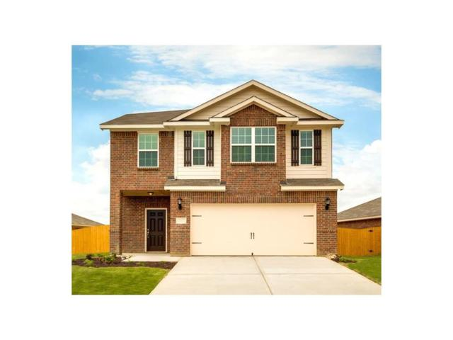 6313 Trinity Creek Drive, Fort Worth, TX 76179 (MLS #13971641) :: Robbins Real Estate Group