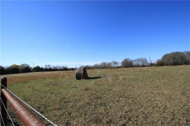 11248B County Road 507, Anna, TX 75409 (MLS #13972037) :: RE/MAX Town & Country