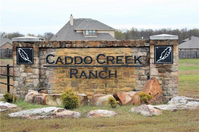 11566 Caddo Creek Drive, Lavon, TX 75166 (MLS #13972038) :: The Rhodes Team