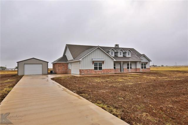 177 Purcell Lane, Tuscola, TX 79562 (MLS #13972418) :: The Paula Jones Team | RE/MAX of Abilene
