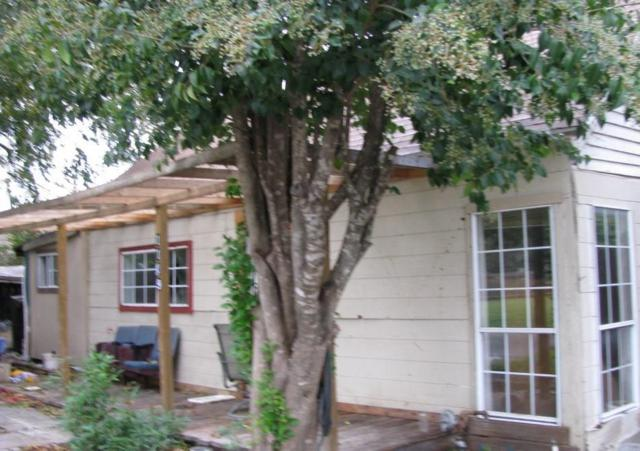 1109 Moore Street, Mckinney, TX 75069 (MLS #13972620) :: The Sarah Padgett Team