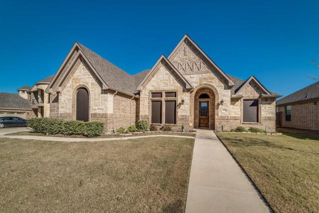 204 Northstar Lane, Waxahachie, TX 75165 (MLS #13973767) :: HergGroup Dallas-Fort Worth