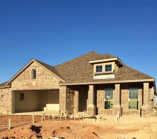 5119 Ambergate Lane, Sherman, TX 75092 (MLS #13973770) :: Baldree Home Team