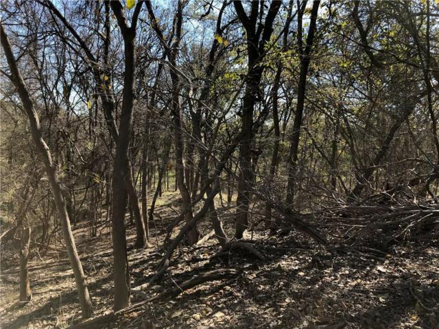 9812 Bellechase Road, Granbury, TX 76049 (MLS #13974393) :: Magnolia Realty