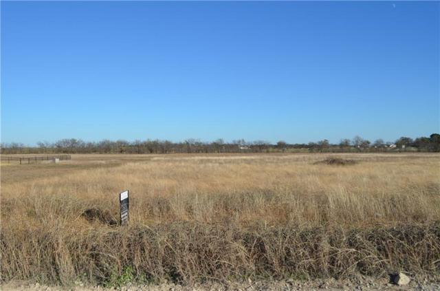 5R2 High Mesa Drive, Justin, TX 76247 (MLS #13974419) :: Baldree Home Team