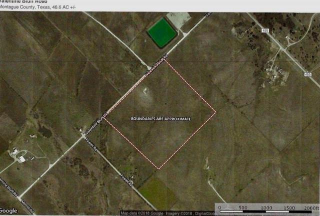 0000 Valentine Bluff Road, Forestburg, TX 76239 (MLS #13974598) :: Robbins Real Estate Group