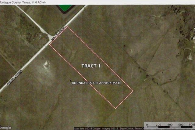 Lot 1 Valentine Bluff Road, Forestburg, TX 76239 (MLS #13974622) :: Robbins Real Estate Group