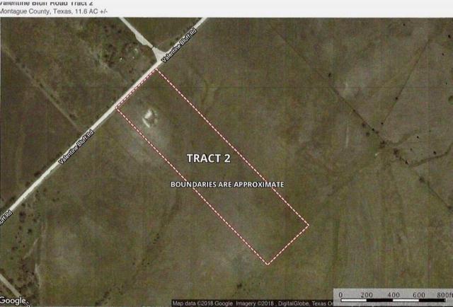 Lot 2 Valentine Bluff Road, Forestburg, TX 76239 (MLS #13974630) :: Robbins Real Estate Group