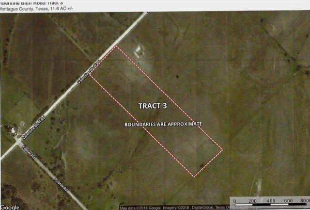 Lot 3 Valentine Bluff Road, Forestburg, TX 76239 (MLS #13974644) :: Robbins Real Estate Group