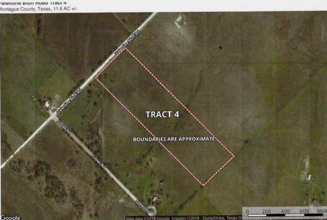 Lot 4 Valentine Bluff Road, Forestburg, TX 76239 (MLS #13974654) :: Robbins Real Estate Group