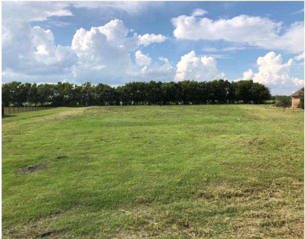 Lot 18 Emerald Ranch Lane, Forney, TX 75126 (MLS #13975452) :: RE/MAX Landmark