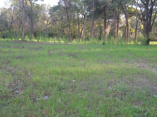 Lot 1 Kickapoo Street, Frankston, TX 75763 (MLS #13976368) :: The Heyl Group at Keller Williams