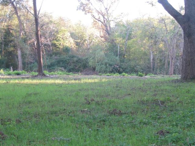 Lot 2 Kickapoo Street, Frankston, TX 75763 (MLS #13976423) :: The Rhodes Team
