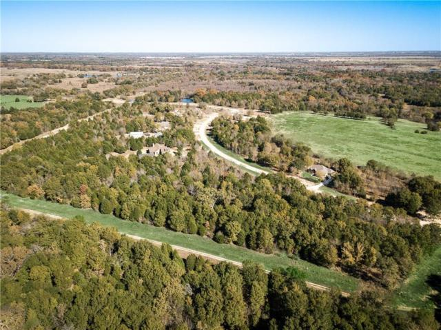 2099 Canyon Lake Drive, Wills Point, TX 75169 (MLS #13977350) :: The Kimberly Davis Group