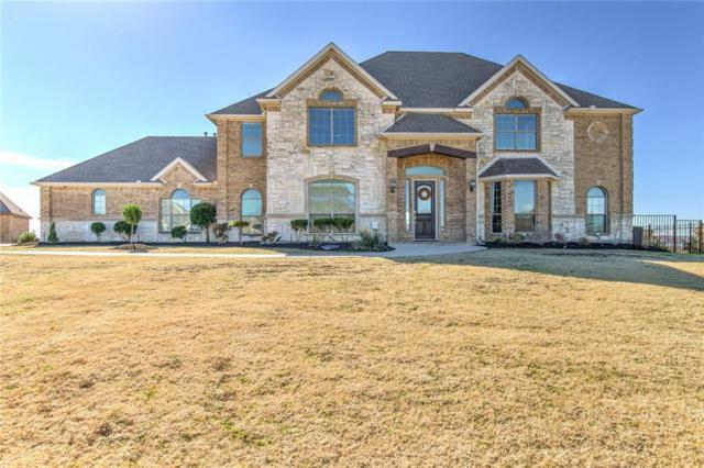12417 Dido Vista Court, Fort Worth, TX 76179 (MLS #13977986) :: Real Estate By Design