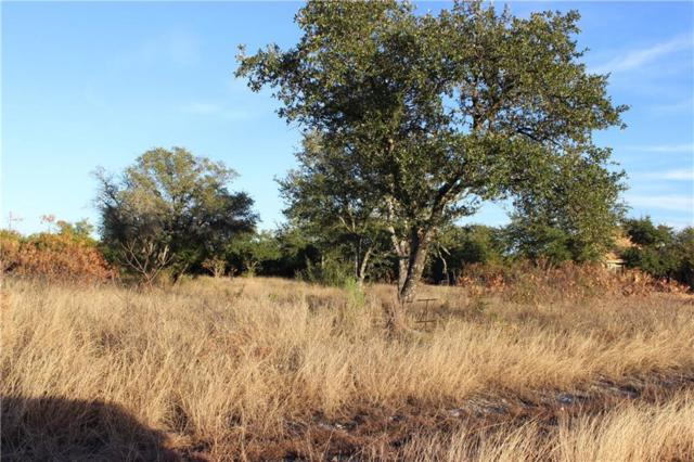 Lot 12 Falcon Drive, Glen Rose, TX 76043 (MLS #13978332) :: The Chad Smith Team