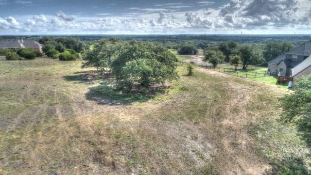 154 Helton, Granbury, TX 76049 (MLS #13979000) :: The Sarah Padgett Team