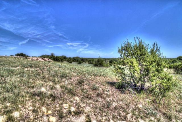 324 Kenyon Court, Granbury, TX 76049 (MLS #13979006) :: The Rhodes Team