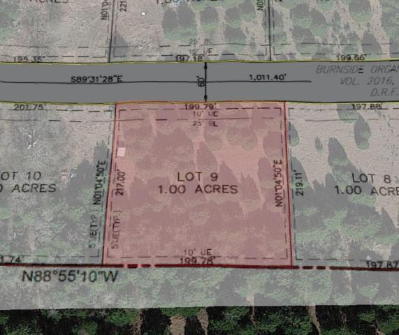 Lot 9 County Road 4920, Leonard, TX 75452 (MLS #13980203) :: The Heyl Group at Keller Williams