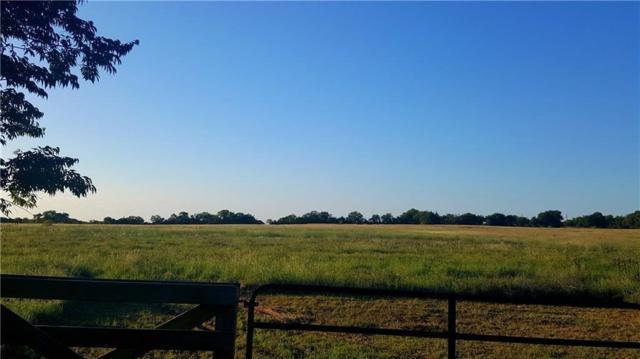 TBD Old Maypearl Road, Waxahachie, TX 75167 (MLS #13980271) :: The Heyl Group at Keller Williams