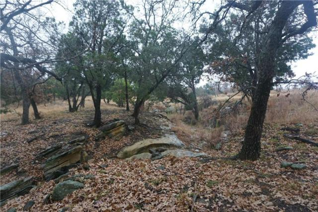 Lot 38 Praire Falcon, Possum Kingdom Lake, TX 76449 (MLS #13980765) :: The Chad Smith Team