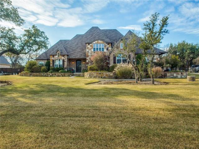 122 Turkey Creek Drive, Aledo, TX 76008 (MLS #13981215) :: The Heyl Group at Keller Williams