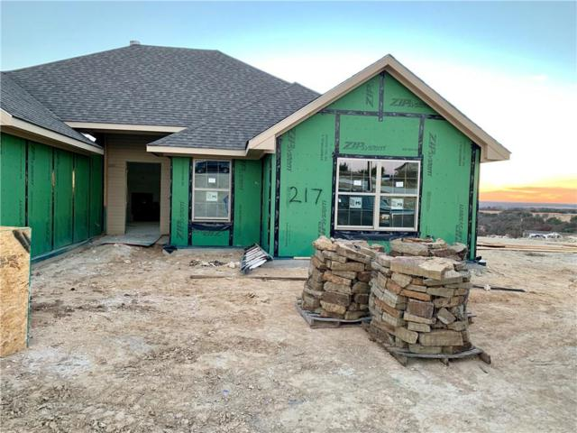 217 Timber Valley Court, Weatherford, TX 76085 (MLS #13981487) :: The Heyl Group at Keller Williams