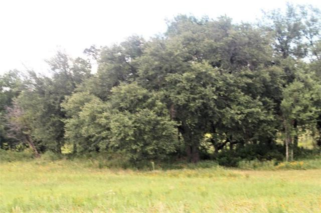 Lot 17 County Road 2027, Glen Rose, TX 76043 (MLS #13982358) :: Real Estate By Design