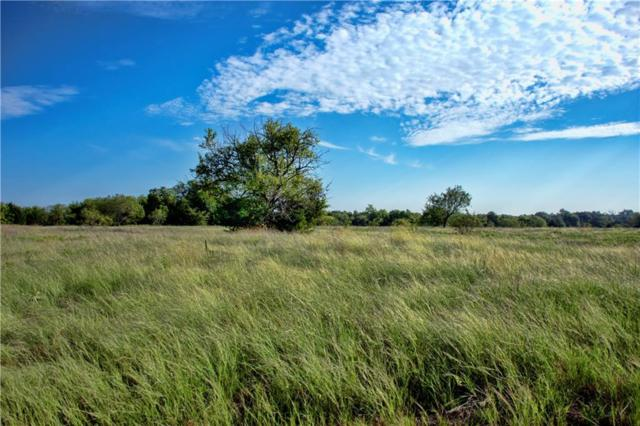 Tract 11 CR 1110, Farmersville, TX 75442 (MLS #13982399) :: The Mitchell Group