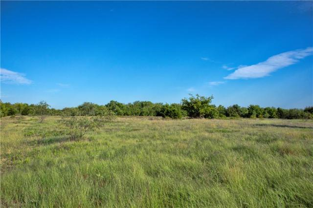 Tract 15 CR 1110, Farmersville, TX 75442 (MLS #13982408) :: The Mitchell Group