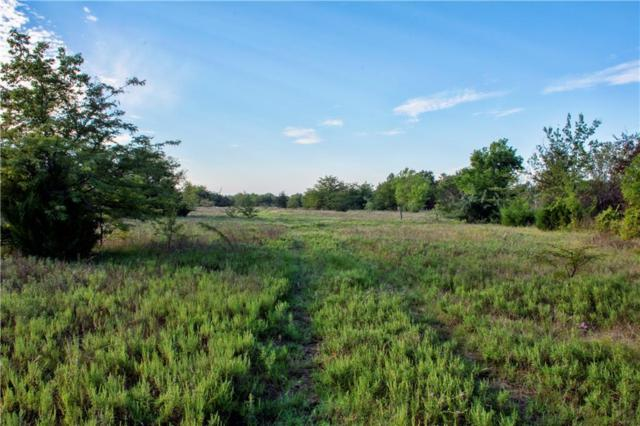 Tract 19 CR 1110, Farmersville, TX 75442 (MLS #13982416) :: The Mitchell Group
