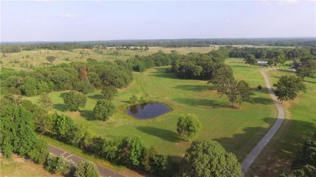 3358 Vz County Road 4702, Ben Wheeler, TX 75754 (MLS #13982463) :: Steve Grant Real Estate