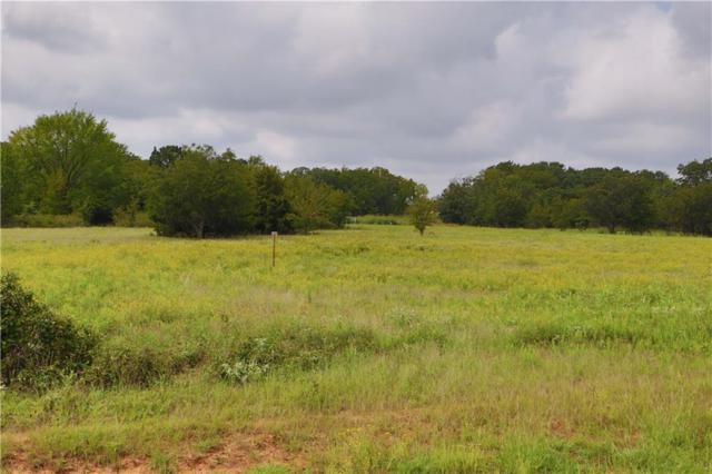 Lot 6 00 County Rd 3386, Paradise, TX 76073 (MLS #13982536) :: The Real Estate Station