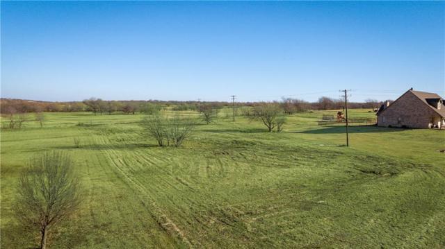 108 Whispering Winds Drive, Gunter, TX 75058 (MLS #13982981) :: The Heyl Group at Keller Williams
