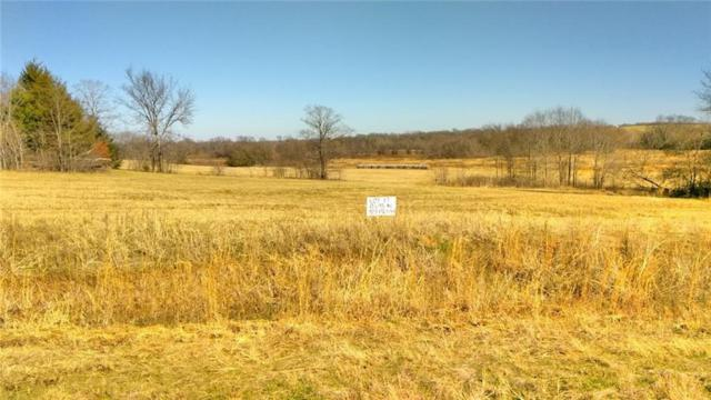 LOT 17 Private Rd 7017, Edgewood, TX 75117 (MLS #13983517) :: The Heyl Group at Keller Williams