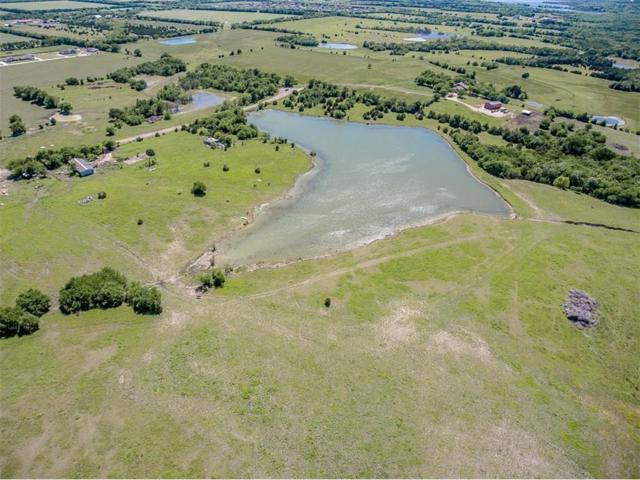 17687 County Road 537, Nevada, TX 75173 (MLS #13983838) :: RE/MAX Town & Country