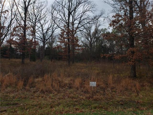 LOT 31 Private Rd 7017, Edgewood, TX 75117 (MLS #13984089) :: The Heyl Group at Keller Williams