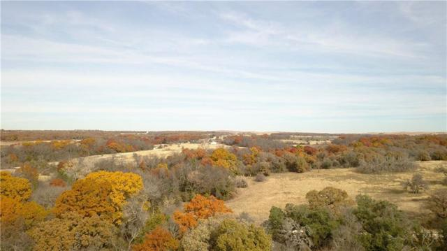 000 County Rd 4460, Decatur, TX 76234 (MLS #13984203) :: The Real Estate Station