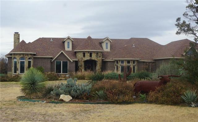 469 Frog Branch Court, Possum Kingdom Lake, TX 76449 (MLS #13984766) :: Steve Grant Real Estate