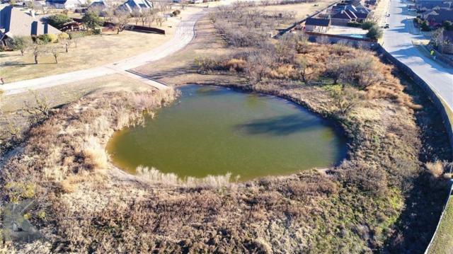4450 La Hacienda Drive, Abilene, TX 79602 (MLS #13984894) :: Charlie Properties Team with RE/MAX of Abilene