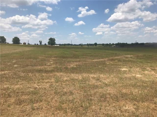 291 Eland Way, Bullard, TX 75757 (MLS #13987083) :: Premier Properties Group of Keller Williams Realty