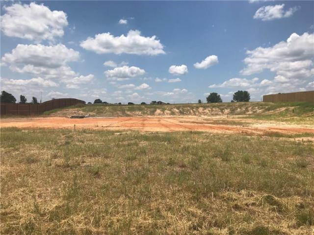 155 Eland Way, Bullard, TX 75757 (MLS #13987086) :: Trinity Premier Properties