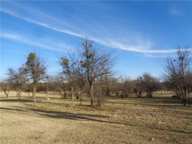 189 Pinnacle Peak Lane, Weatherford, TX 76087 (MLS #13988327) :: Robbins Real Estate Group