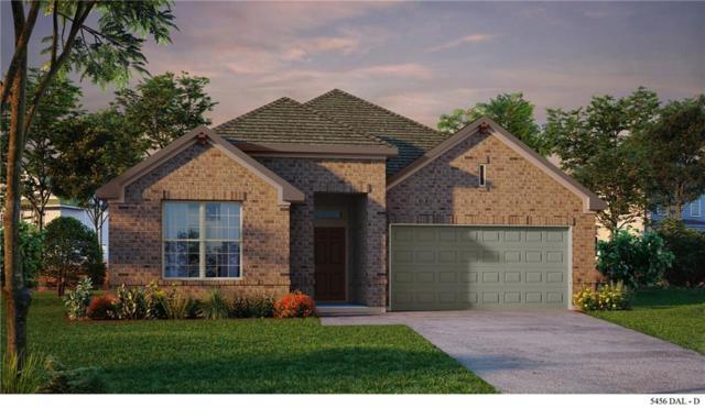 3913 Sunflower Drive, Aubrey, TX 76227 (MLS #13989028) :: Real Estate By Design
