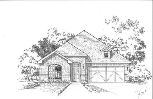 4541 Tall Knight Lane, Carrollton, TX 75010 (MLS #13989343) :: Kimberly Davis & Associates