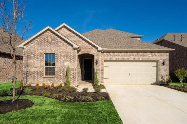 16605 Millenium Park Place, Prosper, TX 75078 (MLS #13989405) :: Robbins Real Estate Group