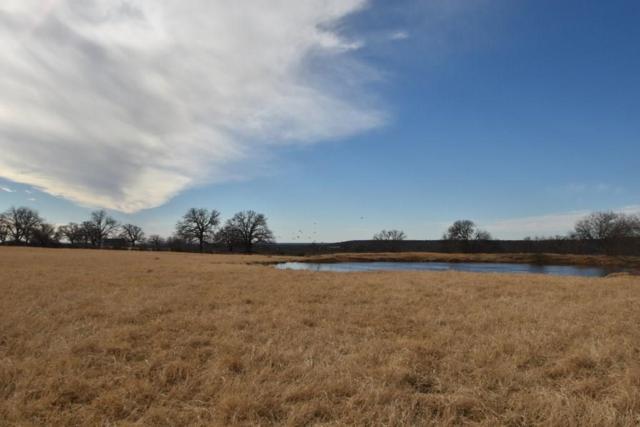 TBD Highway 6, Gorman, TX 76454 (MLS #13990599) :: All Cities Realty